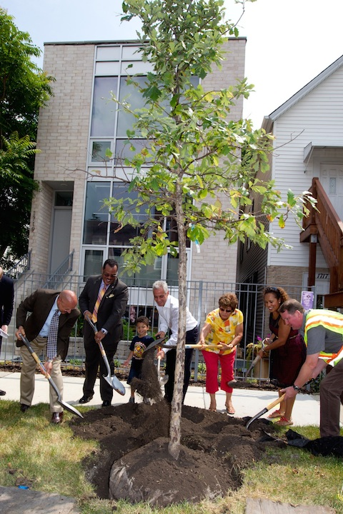Mayor Emanuel Announces City Plan to Plant 800 Additional Trees In Neighborhoods Across Chicago In 2014